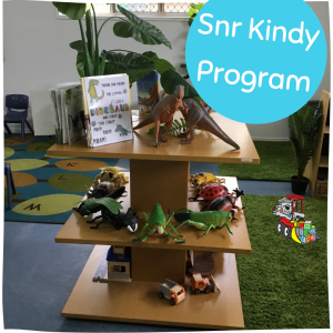 Senior Kindy